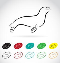 Images of sea lion vector
