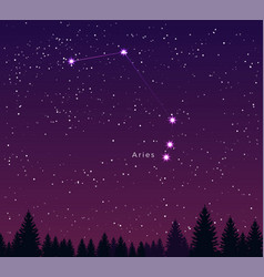 Night sky with aries constellation vector
