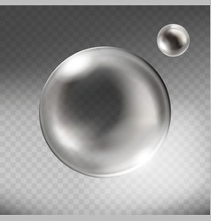 Realistic silver glass sphere transparent vector