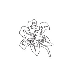 single continuous line drawing beauty lilium vector image