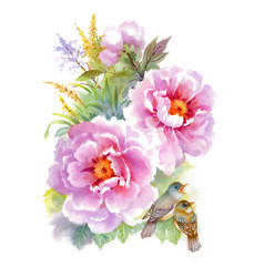 watercolor flowers and birds on white background vector image vector image