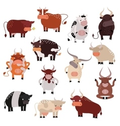Cartoon cow action set with cute lovely heifer in vector image vector image