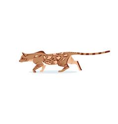 Beautiful hunting graceful bengal cat vector