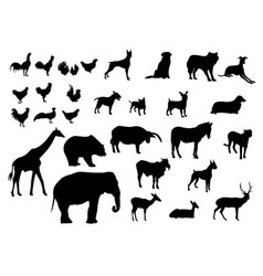 black silhouettes set of animals various types vector image