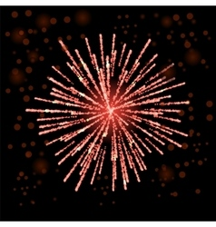 Firework Lights up the Sky vector image
