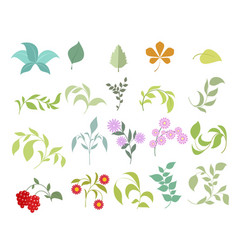 floral elements set vector image