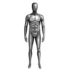man 3d monochrome dummy with steel texture vector image