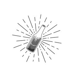 nature bottle and sunburst designs vector image