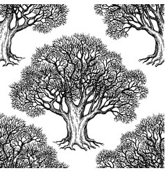 seamless pattern with oak vector image