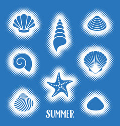 summer card with sea shells vector image