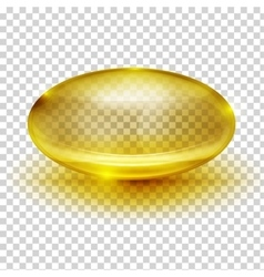 Transparent Capsule Image vector image
