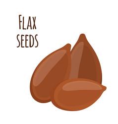 flax seeds linseed brown seed organic vegetarian vector image