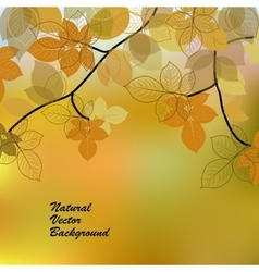 Nature background with yellow leaves vector image