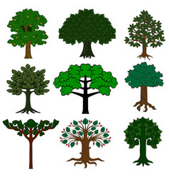 set of trees isolated on white background vector image vector image