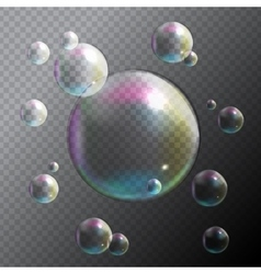 Transparent Bubbles on Gray Background vector image vector image
