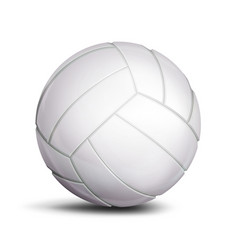 volleyball ball sport game fitness symbol vector image vector image