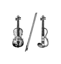 classical and electric violins vector image