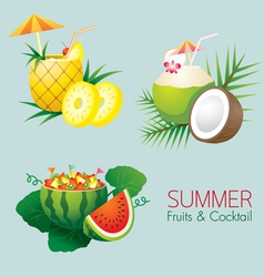 Coconut Pineapple Watermelon Fruit and Cocktail vector
