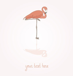 FlamingoStand12 vector image
