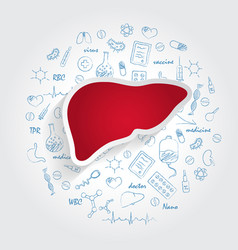 Icons for medical specialties hepatology and vector