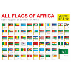 All flags africa vector