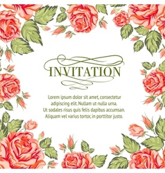 Frame red roses on a white background vector