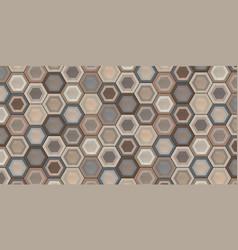 Hexagon ceramic tiles vector