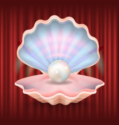 pearl in seashell expensive jewelry in mollusk vector image
