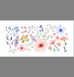 watercolor spring flower set isolated vector image