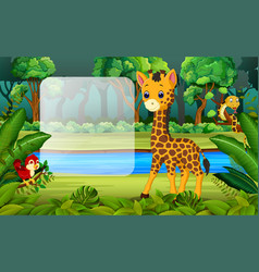 giraffe in the forest vector image