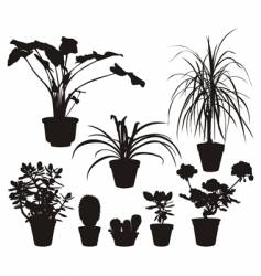home plants silhouettes vector image vector image