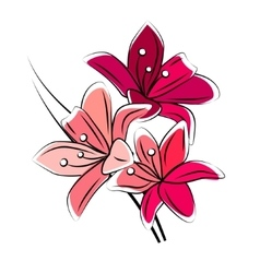 Stylized red lily isolated vector image vector image
