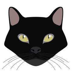Bombay cat avatar cat breeds vector