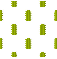 Green cactus plant pattern seamless vector