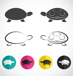 Group of turtle vector
