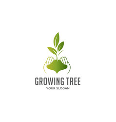 growing tree logo vector image