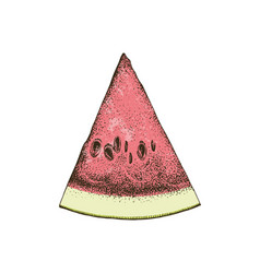 hand drawn watermelon slice vector image