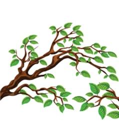 Leaves on tree vector