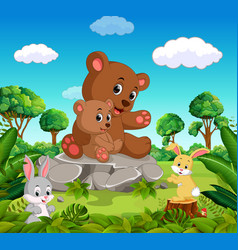 bear and baby bear in the forest vector image
