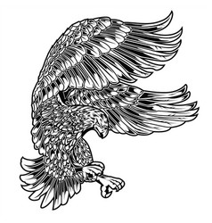 eagle bird drawing wing annimal usa america vector image