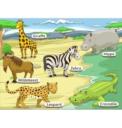 Educational game african savannah animals vector