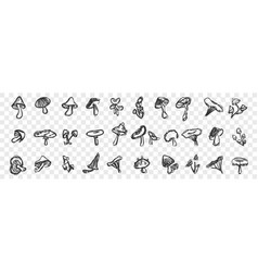 hand drawn mushrooms doodle set vector image