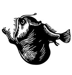 Leftvent anglerfish vector