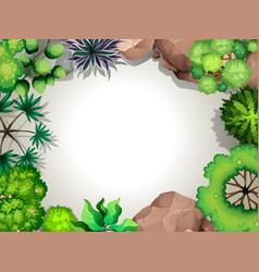 a aerial garden view template vector image