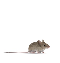 Abstract rat vector