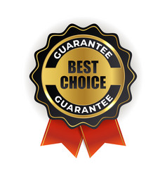 best choice golden quality label sign vector image