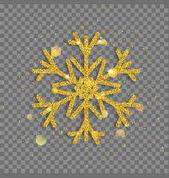 Big shiny christmas snowflake vector