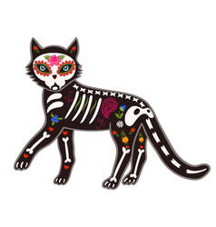 Death day cat sugar skeleton isolate on a white vector