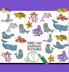 find two identical sea animals game for kids vector image