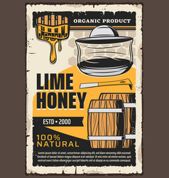 Lime honey organic natural apiculture products vector